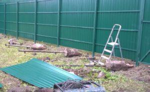 Забор из профнастила (3 метра)